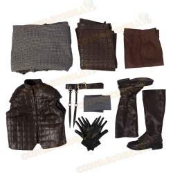 Costume Cosplay Arya Stark